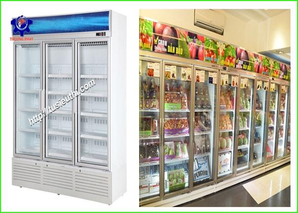 Tư vấn chọn tủ mát bảo quản hoa quả phù hợp với cửa hàng