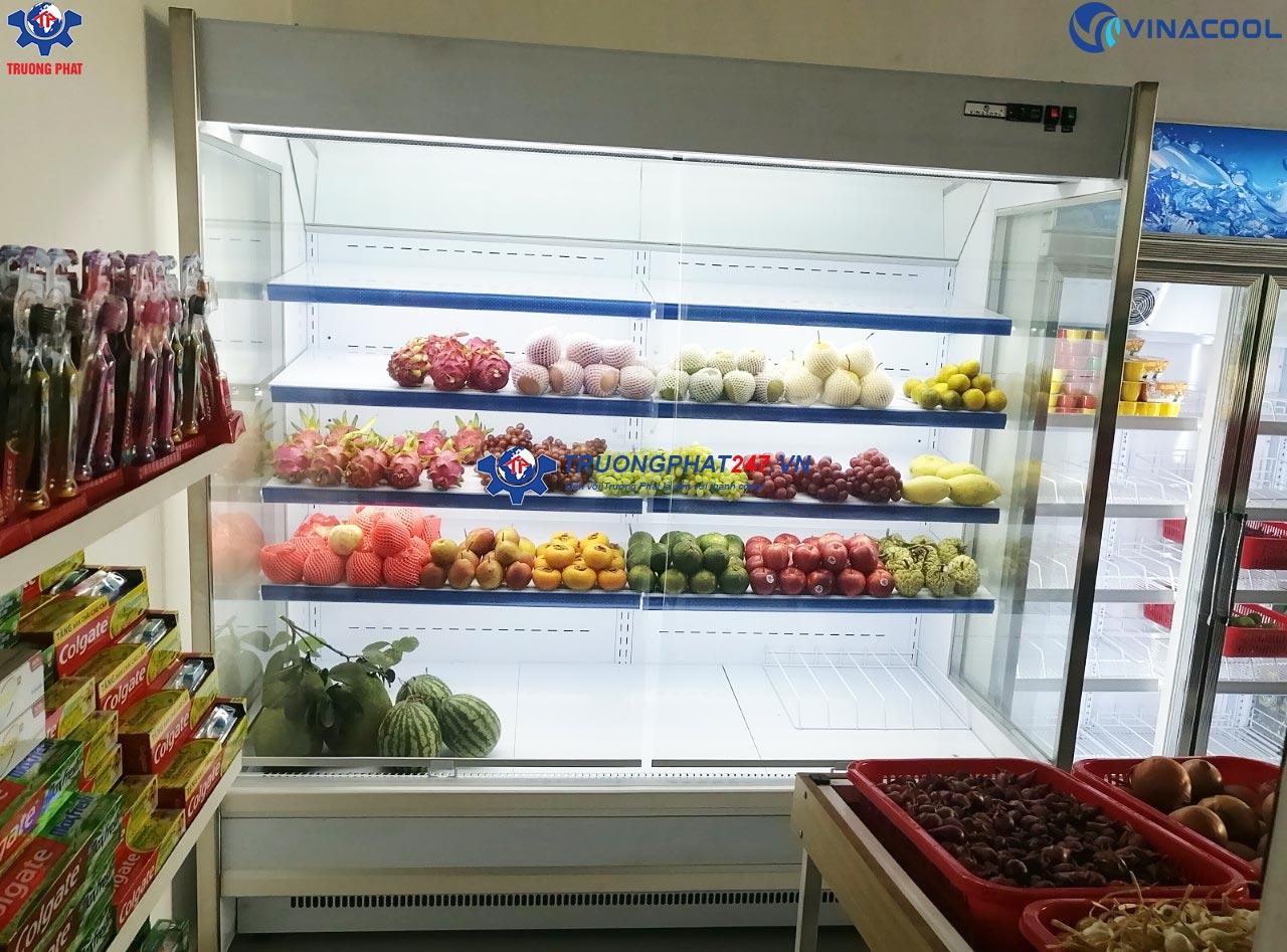 Nên mua tủ lạnh đựng hoa quả loại nào?