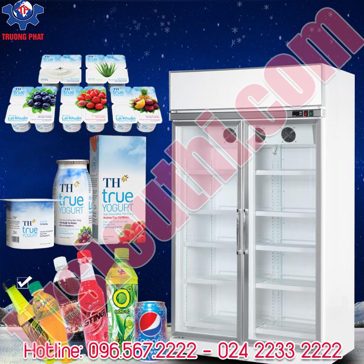 Tủ mát siêu thị trưng bày trái cây, nước ngọt 2 cánh kính SLG-1200FS
